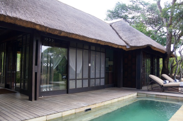 Phinda Vlei cottage