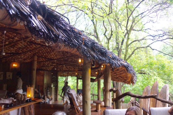 Lake Manyara Tree House
