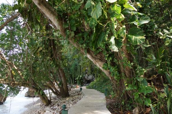 Walk way along the ocean Round Hill
